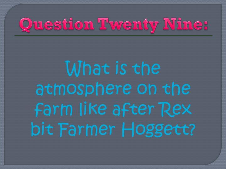 Question Twenty Nine: