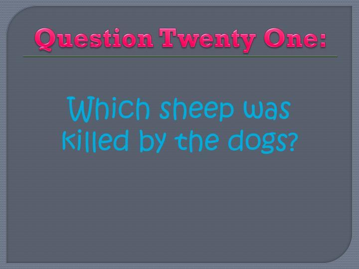 Question Twenty One: