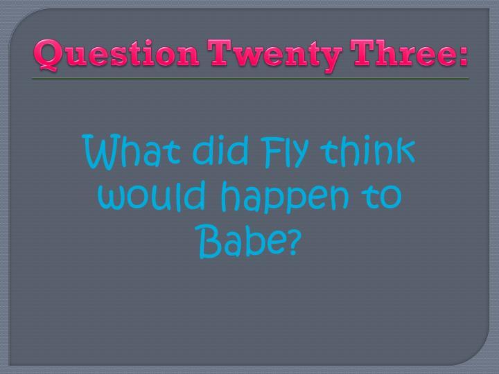 Question Twenty Three: