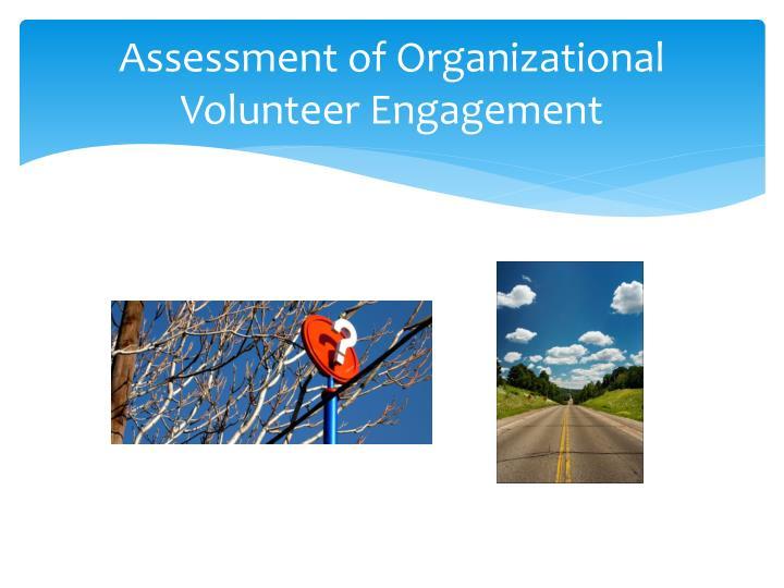 Assessment of Organizational Volunteer Engagement