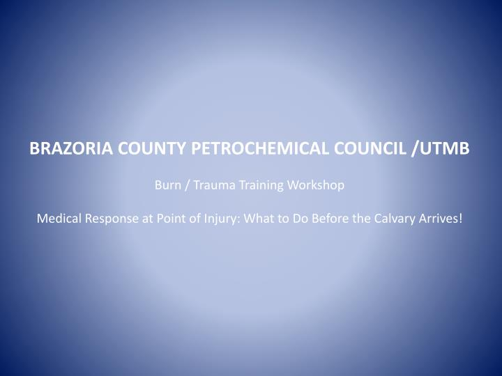 BRAZORIA COUNTY PETROCHEMICAL COUNCIL /UTMB