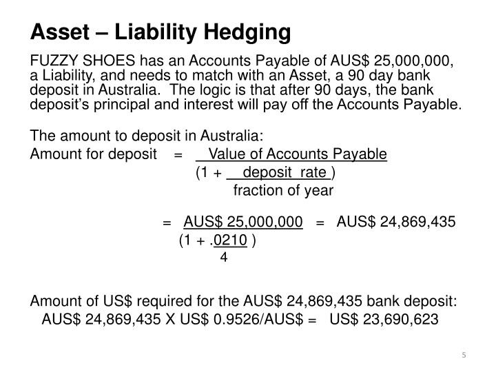 Asset – Liability Hedging