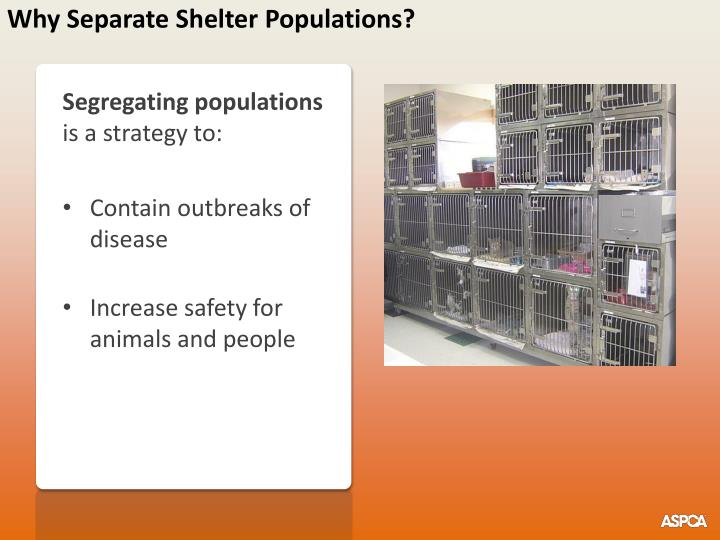 Why separate shelter populations