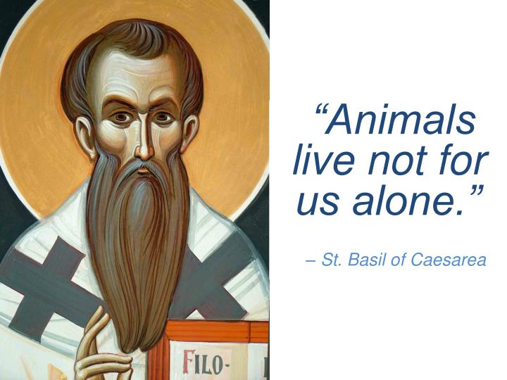 """Animals live not for us alone."""