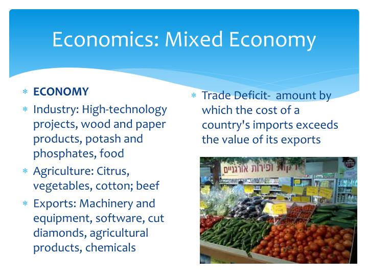 Economics: Mixed Economy