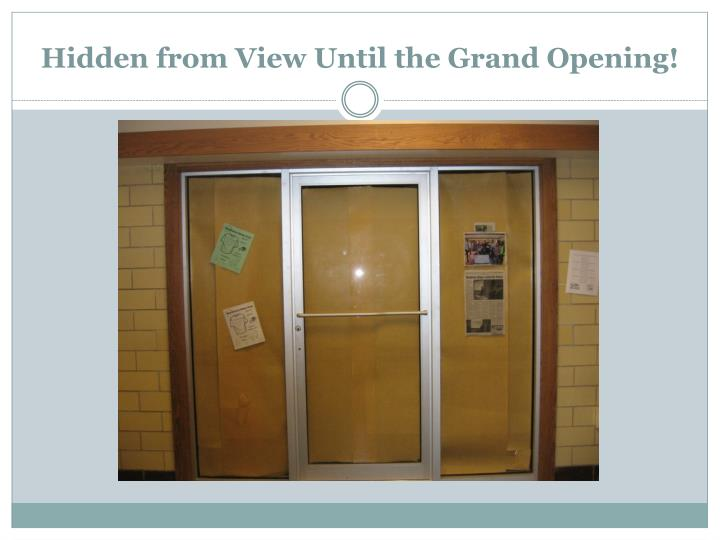 Hidden from View Until the Grand Opening!