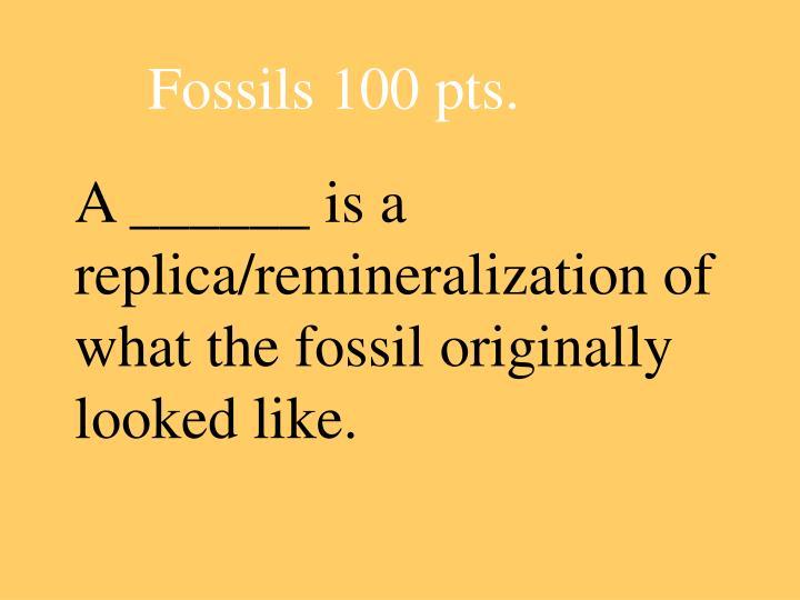 A ______ is a replica/