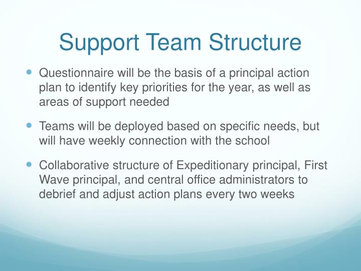 Support Team Structure