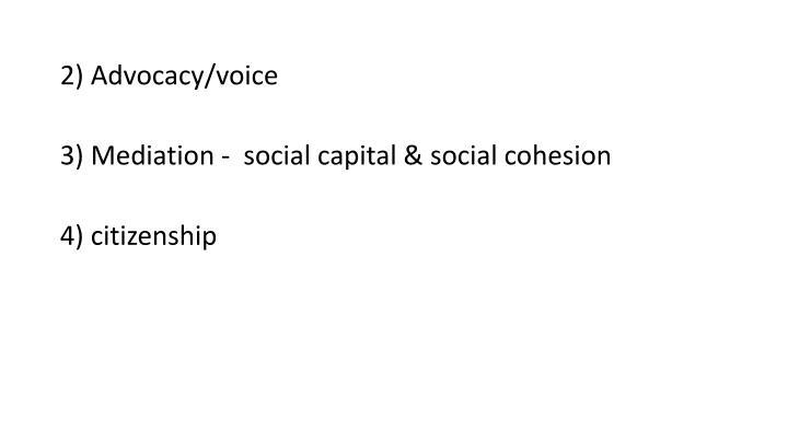 2) Advocacy/voice