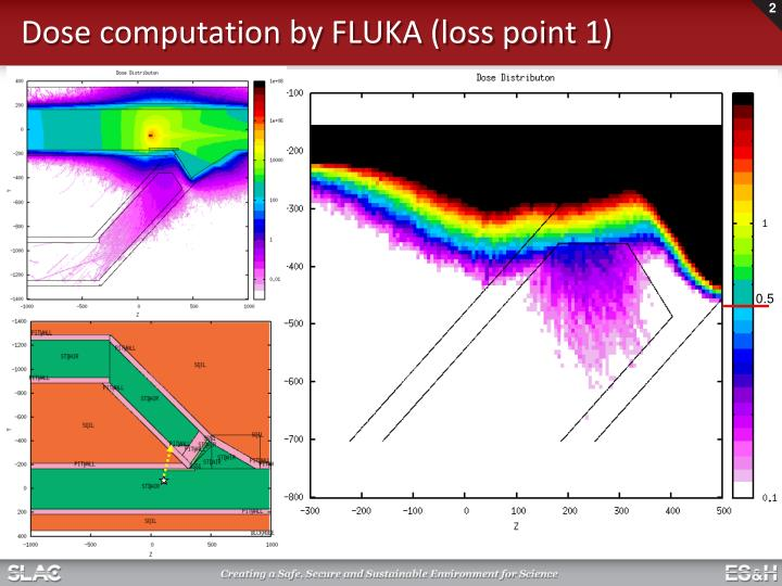 Dose computation by fluka loss point 1