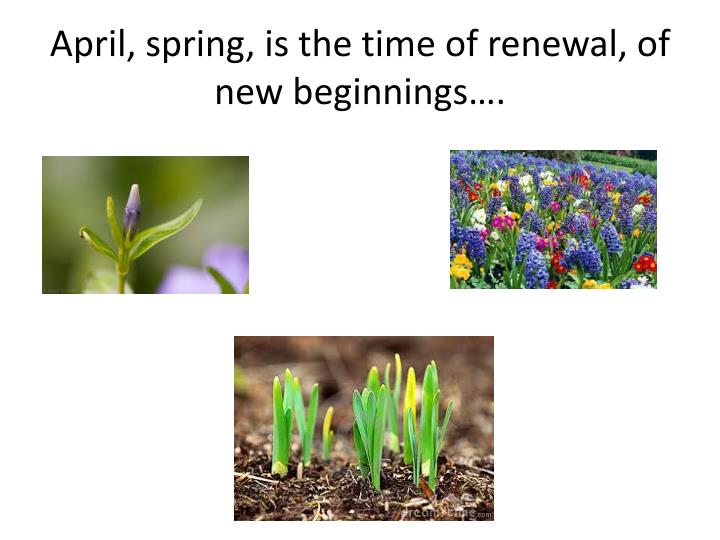 April, spring, is the time of renewal, of new beginnings….