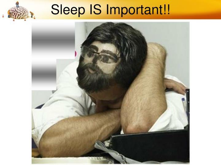 Sleep IS Important!!
