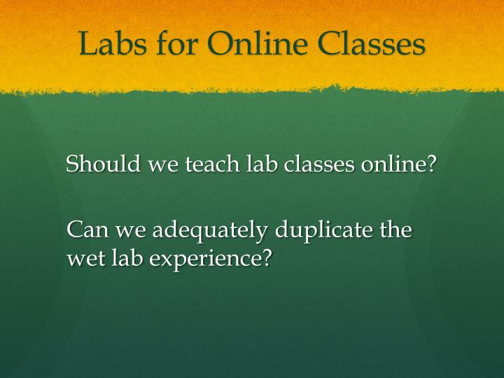 Labs for Online Classes