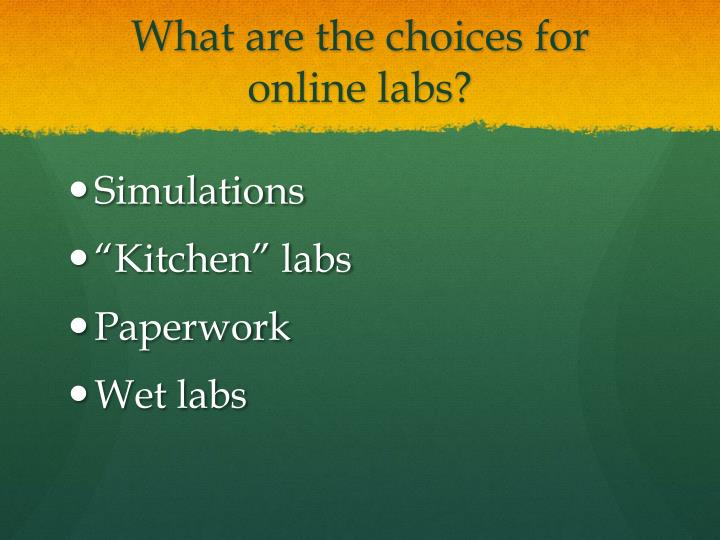 What are the choices for online labs?