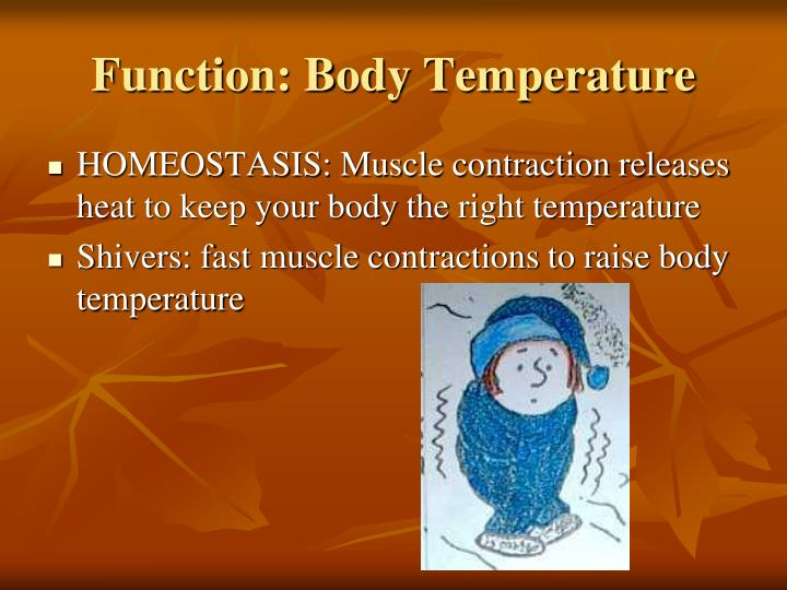 Function body temperature