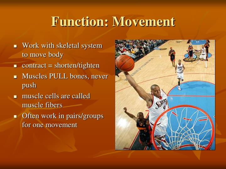 Function movement