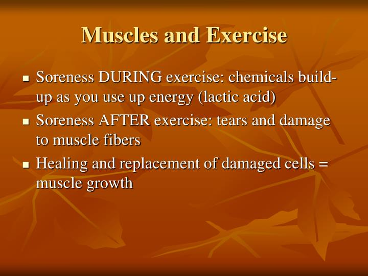 Muscles and Exercise