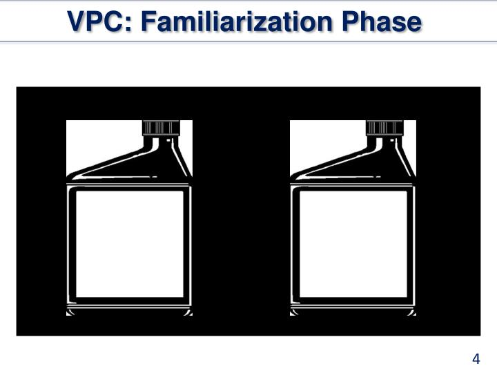 VPC: Familiarization Phase