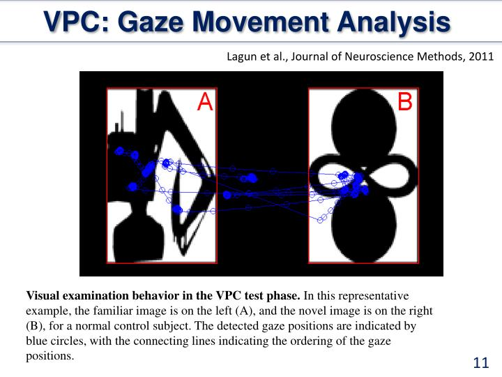 VPC: Gaze Movement Analysis