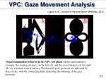 vpc gaze movement analysis