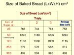 size of baked bread lxwxh cm 3