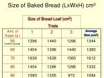 size of baked bread lxwxh cm 31