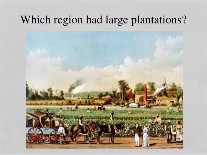 Which region had large plantations?