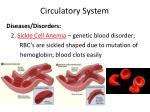circulatory system9