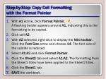step by step copy cell formatting with the format painter