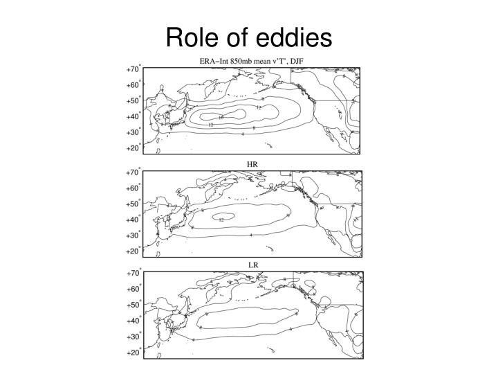 Role of eddies