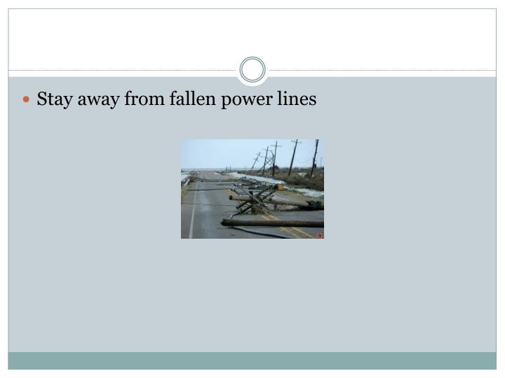 Stay away from fallen power lines