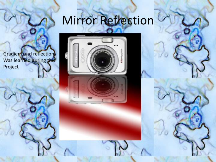 Mirror Reflection