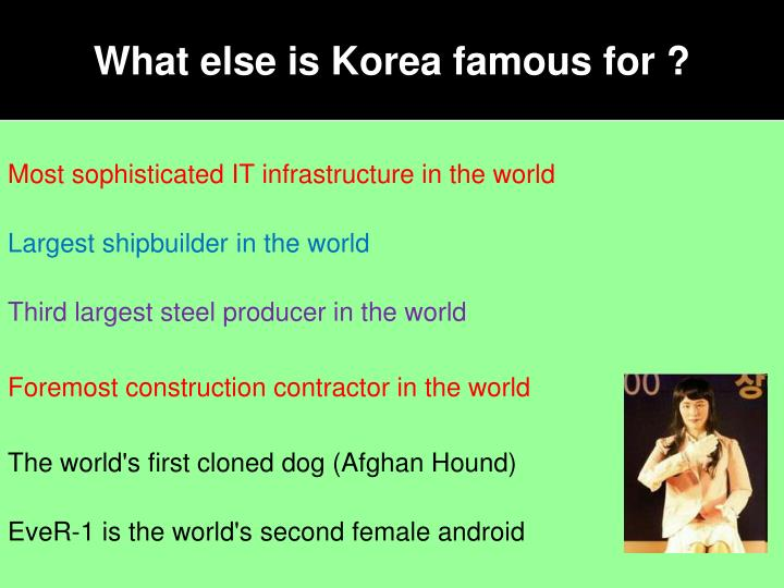 What else is Korea famous for ?