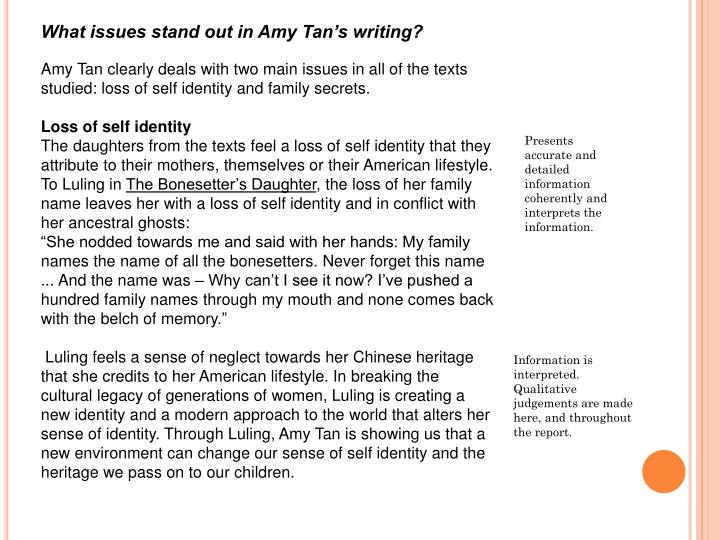 What issues stand out in Amy Tan's writing?