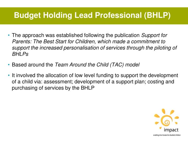 Budget Holding Lead Professional (BHLP)