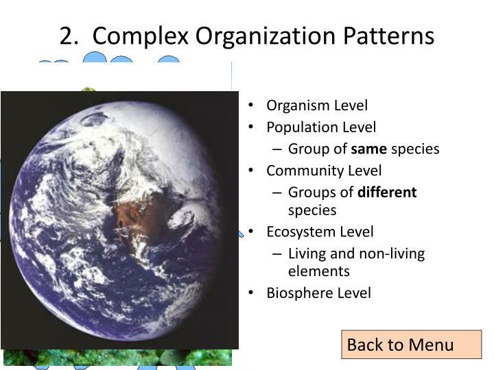 2.  Complex Organization Patterns