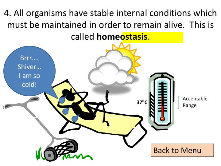 4. All organisms have stable internal conditions which must be maintained in order to remain alive.  This is called