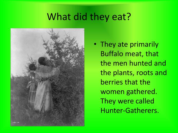 What did they eat?