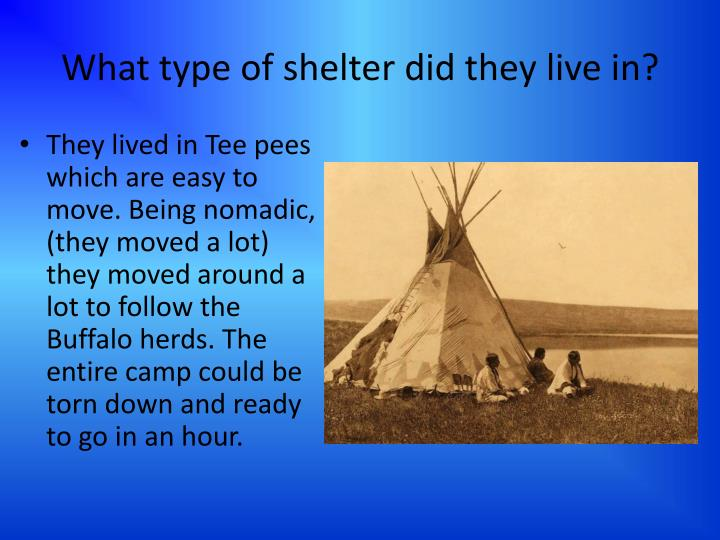 What type of shelter did they live in?