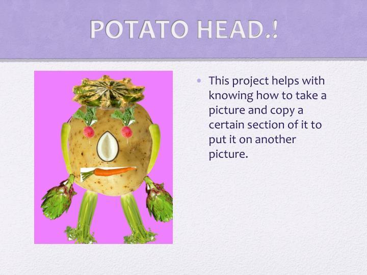 POTATO HEAD.!