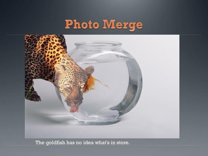 Photo Merge