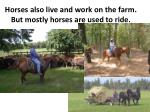 horses also live and work on the farm but mostly horses are used to ride