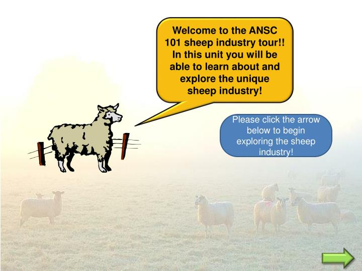 Welcome to the ANSC 101 sheep industry tour!! In this unit you will be able to learn about and explo...