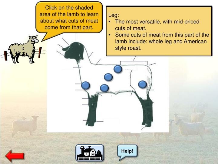 Click on the shaded area of the lamb to learn about what cuts of meat come from that part.