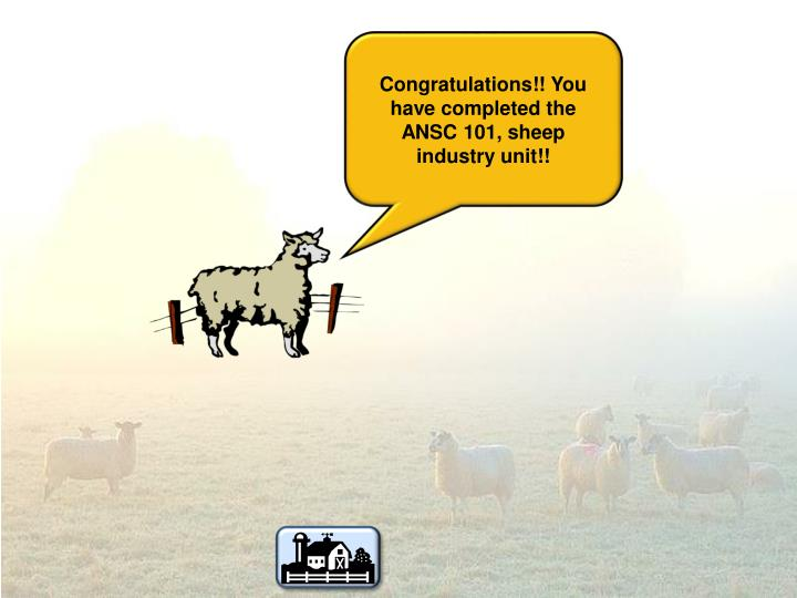 Congratulations!! You have completed the ANSC 101, sheep industry unit!!