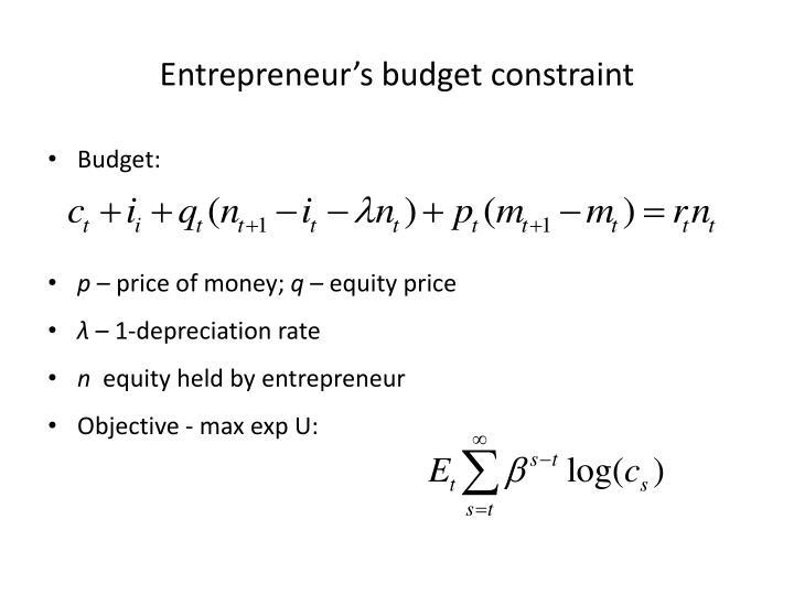 Entrepreneur's budget constraint