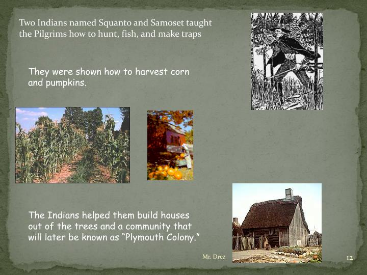 Two Indians named Squanto and Samoset taught the Pilgrims how to hunt, fish, and make traps