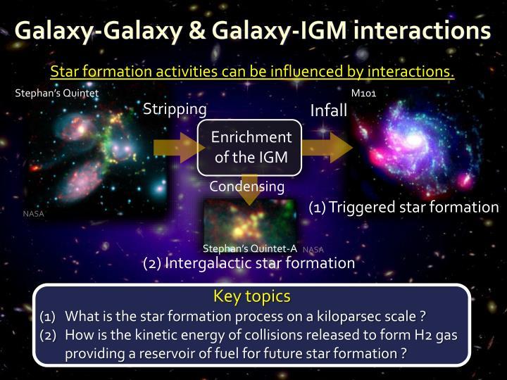 Galaxy-Galaxy & Galaxy-IGM interactions