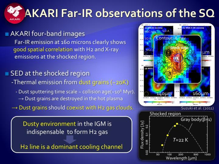 AKARI Far-IR observations of the SQ