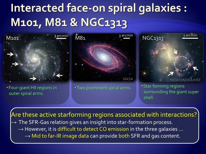 Interacted face-on spiral galaxies : M101, M81 & NGC1313
